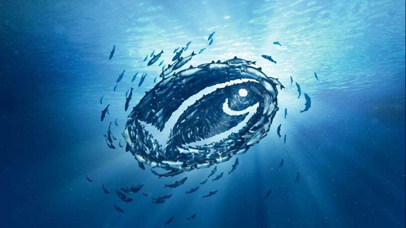 Seafood Consumers Want Less Pollution and More Fish in the Sea